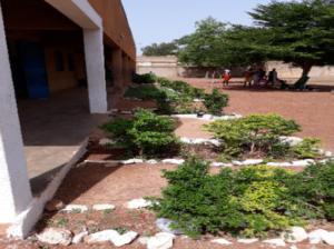 parterres devant les classes et arbres dans la cour d'une école du Burkina Faso